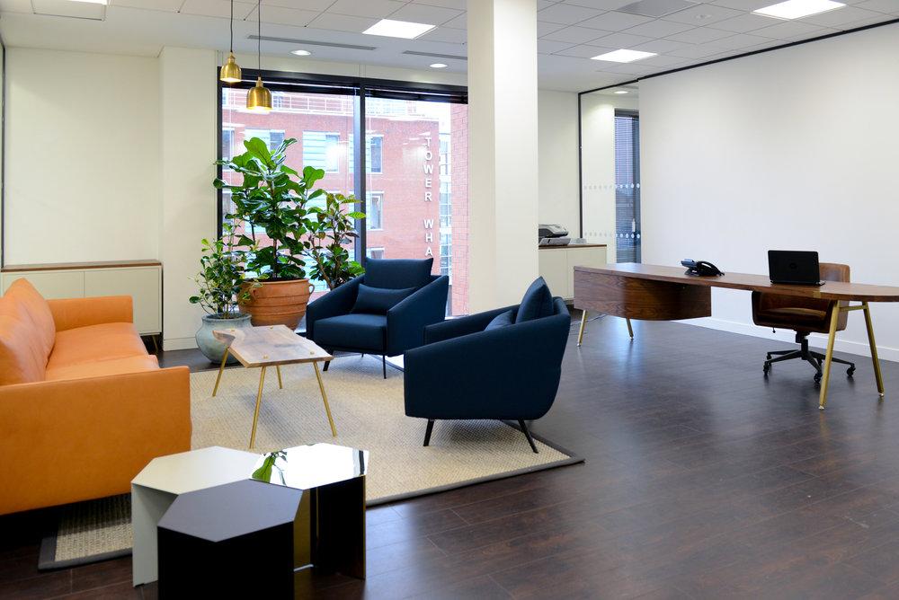 ovo-energy-2-plantcare-interior-plants-office-eco-friendly-trees-bristol-cardiff-image-6