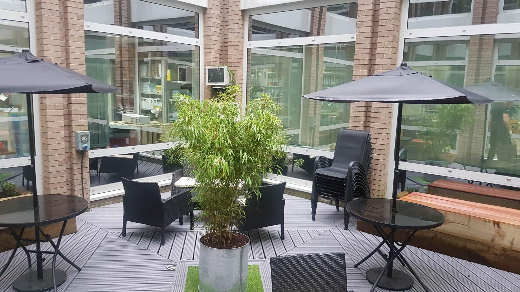 bristol-computer-society-exterior-plant-displays-plantcare-image-5