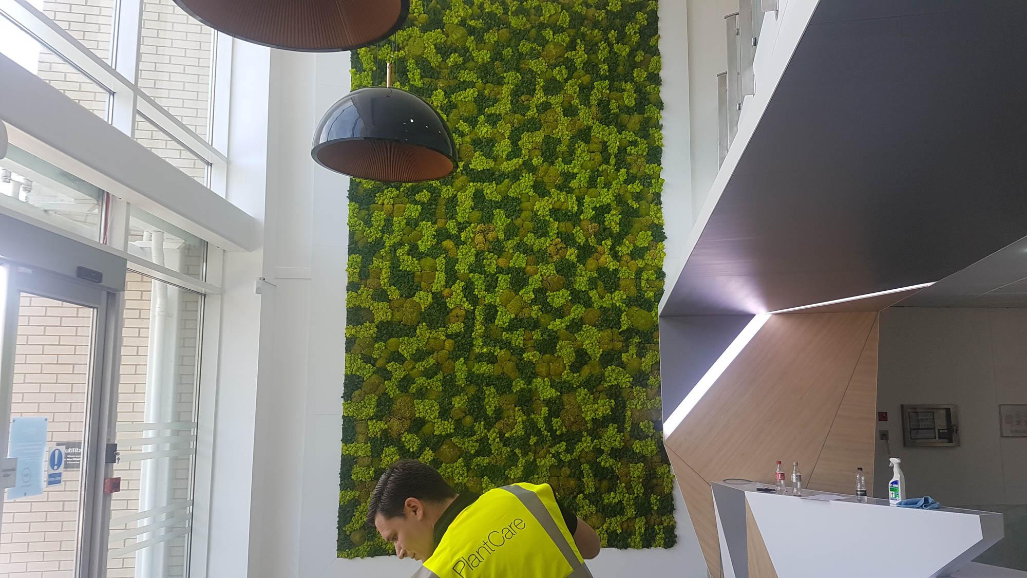 utilita-mosswall-bespoke-custom-plantcare-bristol-image-2