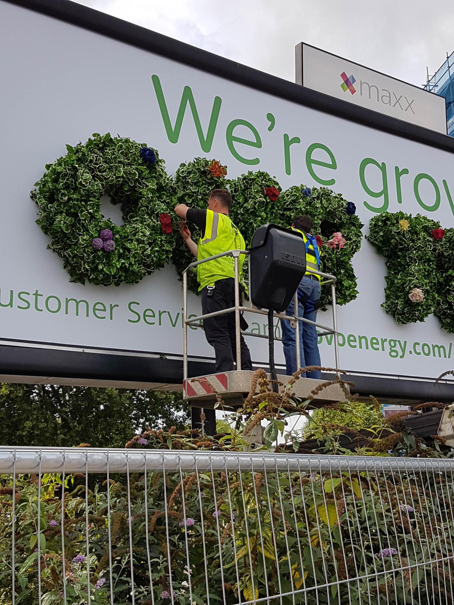 thirty-three-exterior-plant-display-billboard-mosswall-bespoke-custom-bristol-plantcare-ovo-energy-image-13