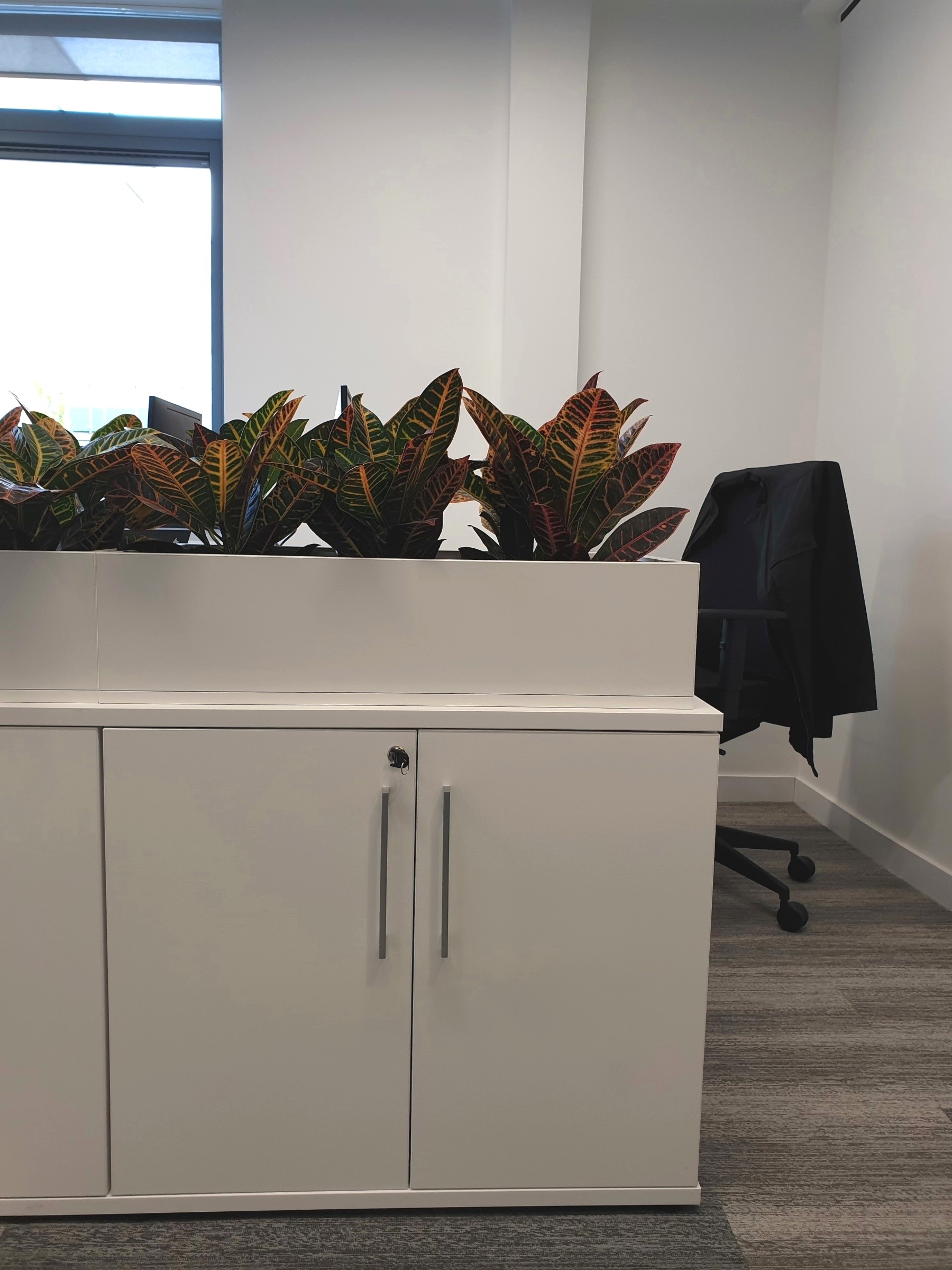 cabinet top planters.jpg