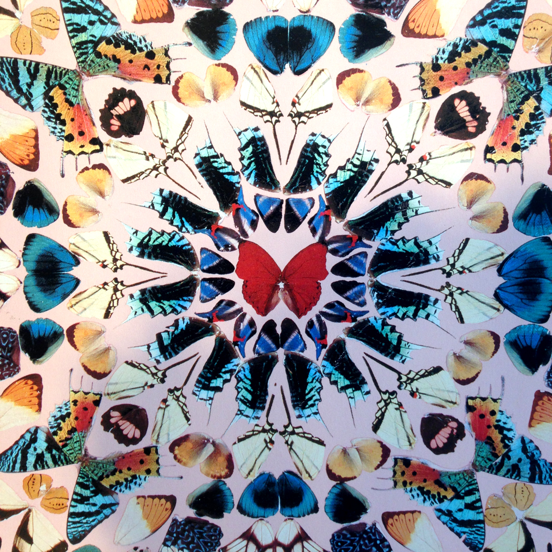 Damien-Hirst-butterflies.jpg