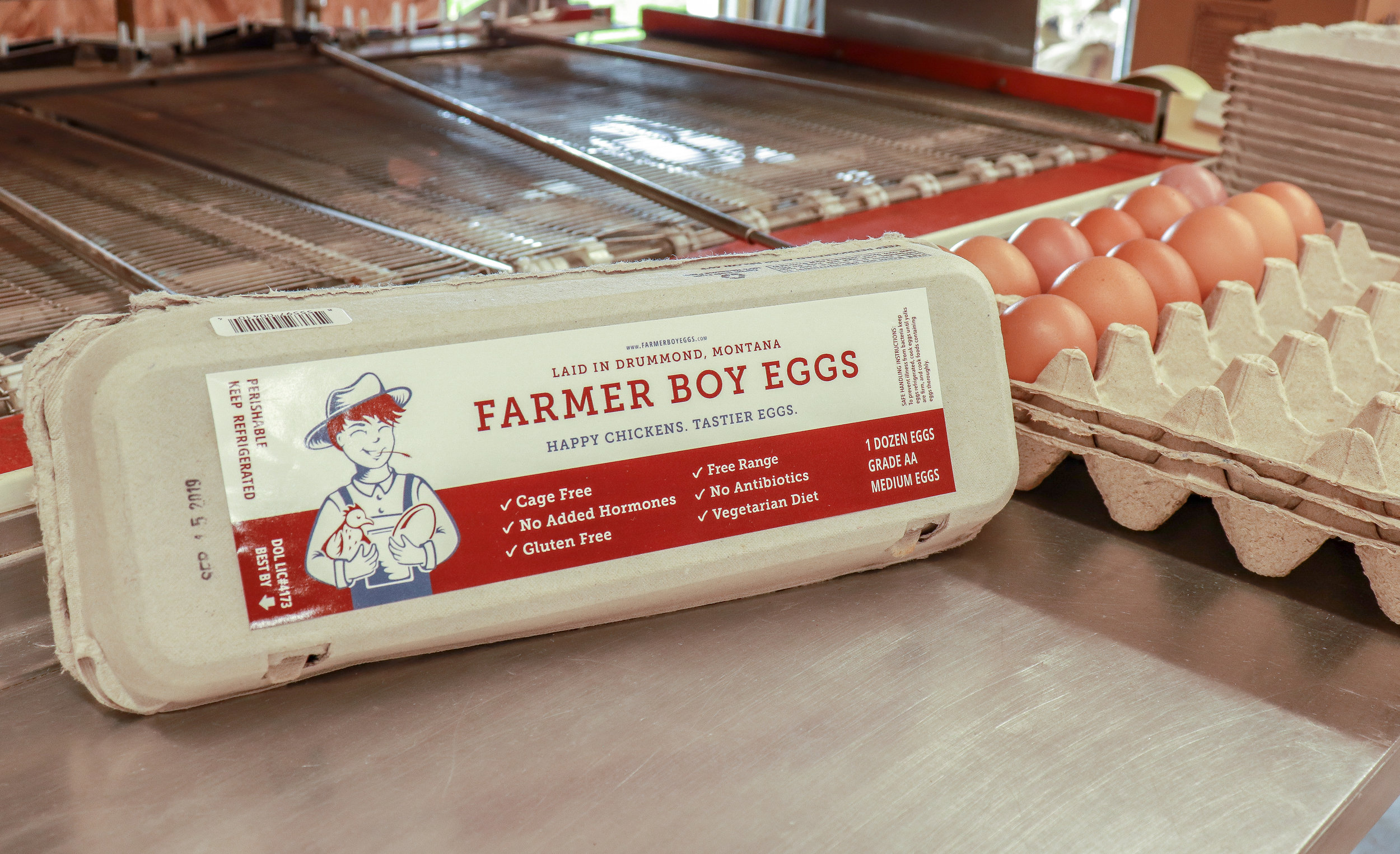 Closed Carton with Eggs - Medium.jpg