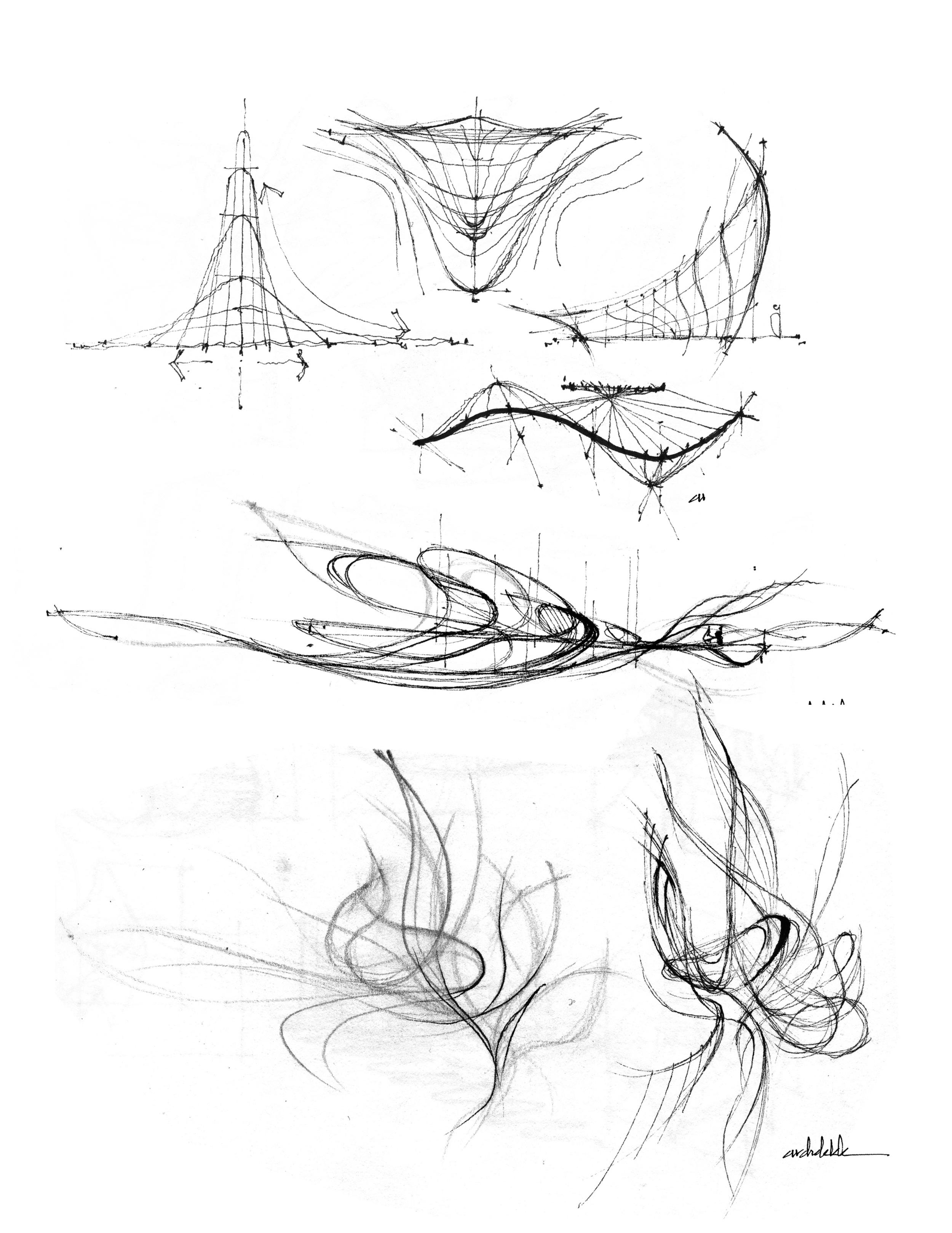 Curve Study.jpg
