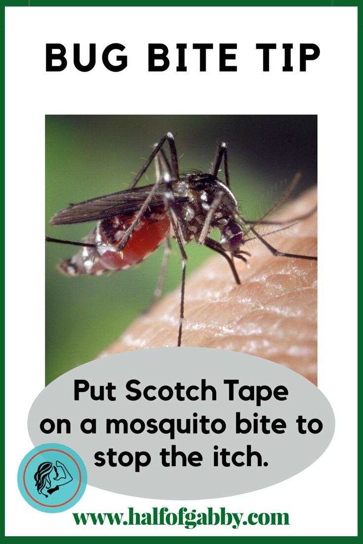 Bug Bite Remedy