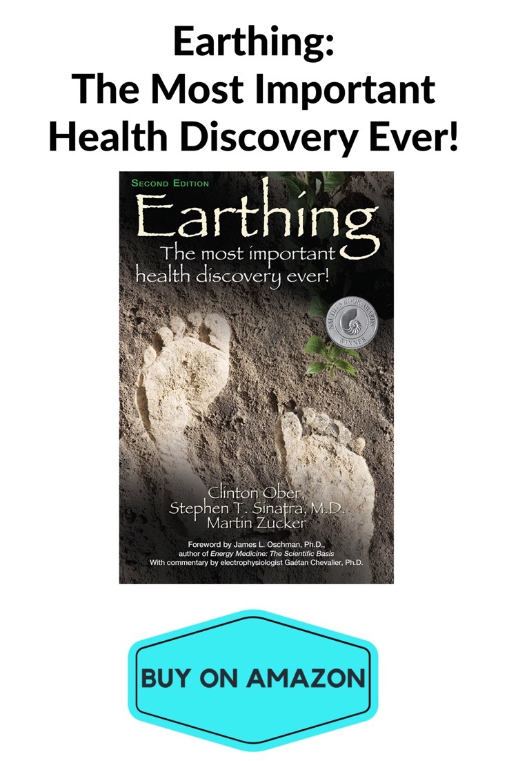 Earthing Paperback
