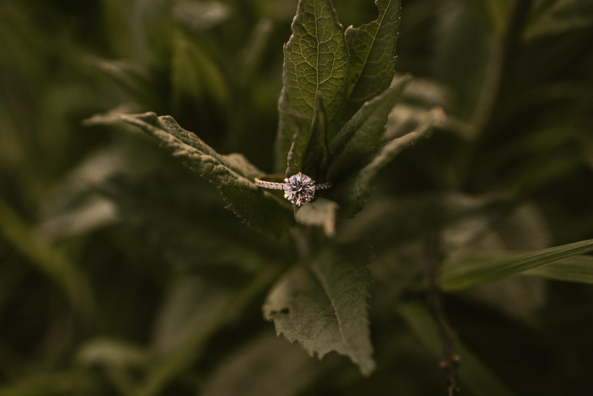 Omaha-Nebraska-Engagement-Session-Kaylie-Sirek-Photography-147.jpg