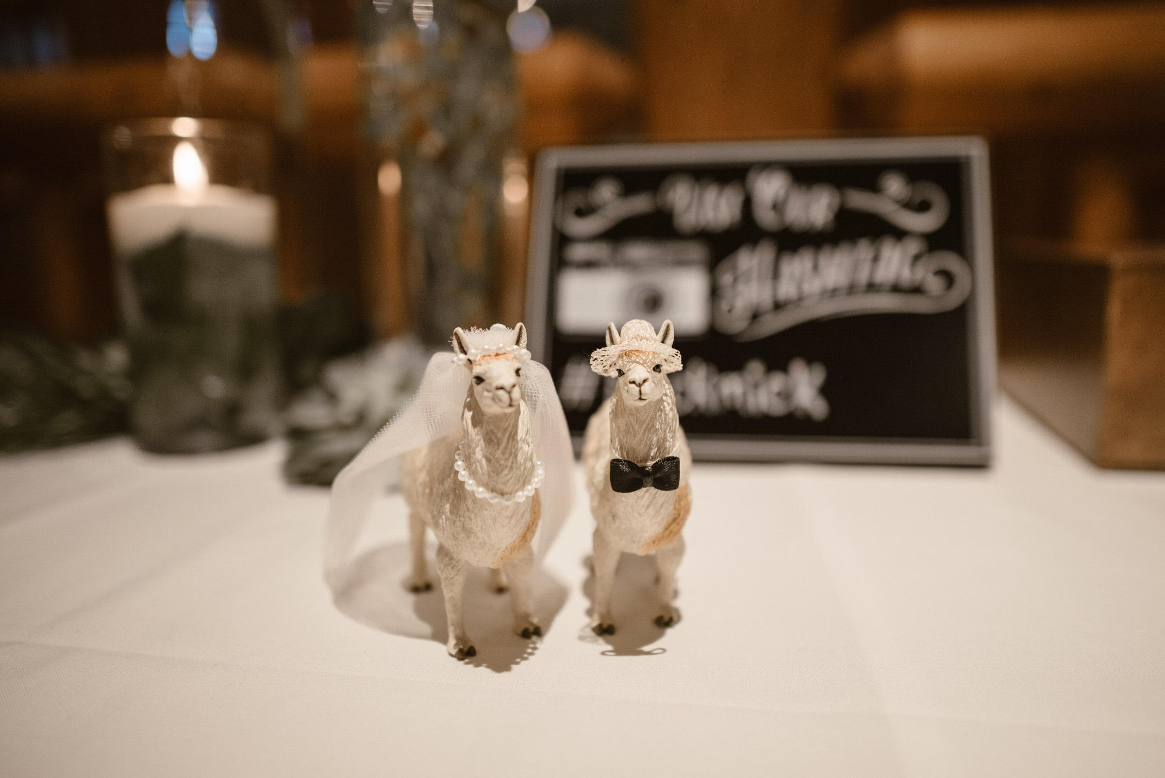 Wilderness-Ridge-Lincoln-Nebraska-Wedding-Kaylie-Sirek-Photography-080.jpg