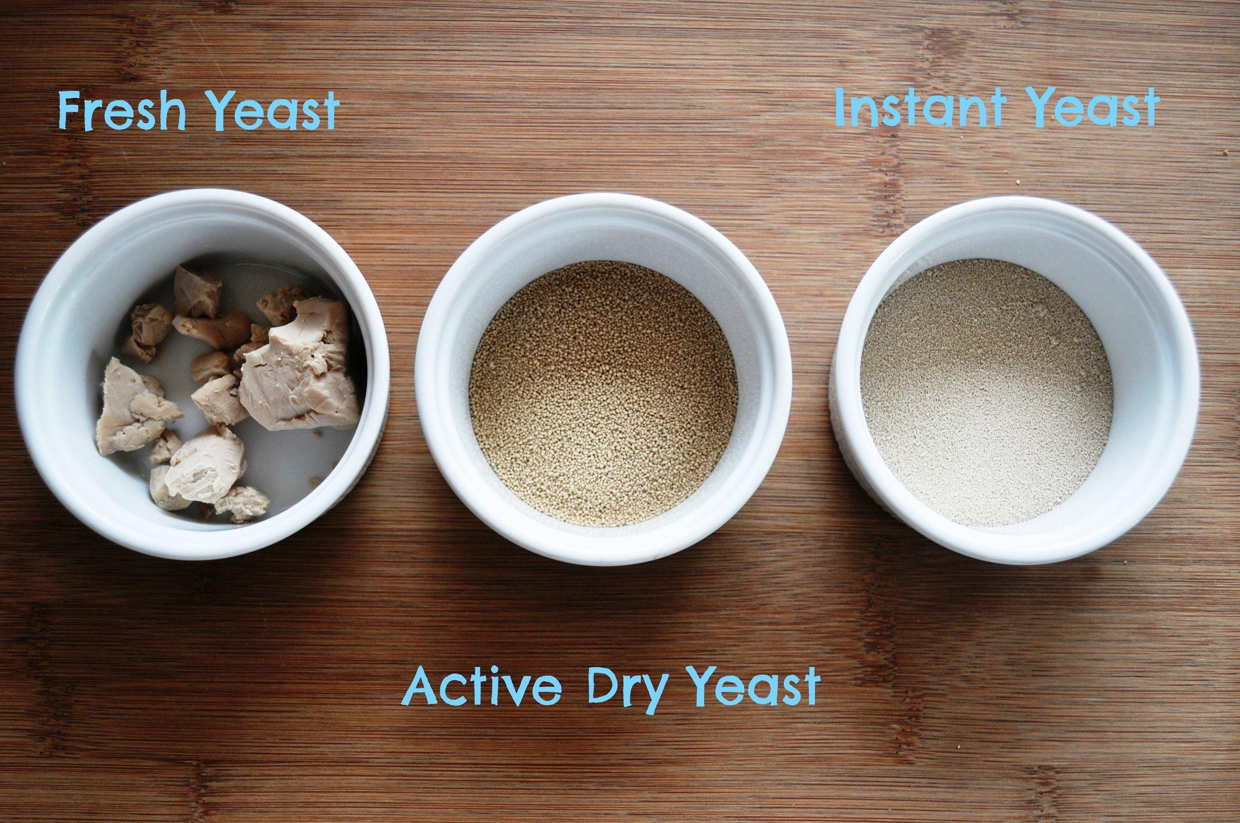 Three kinds of yeast.