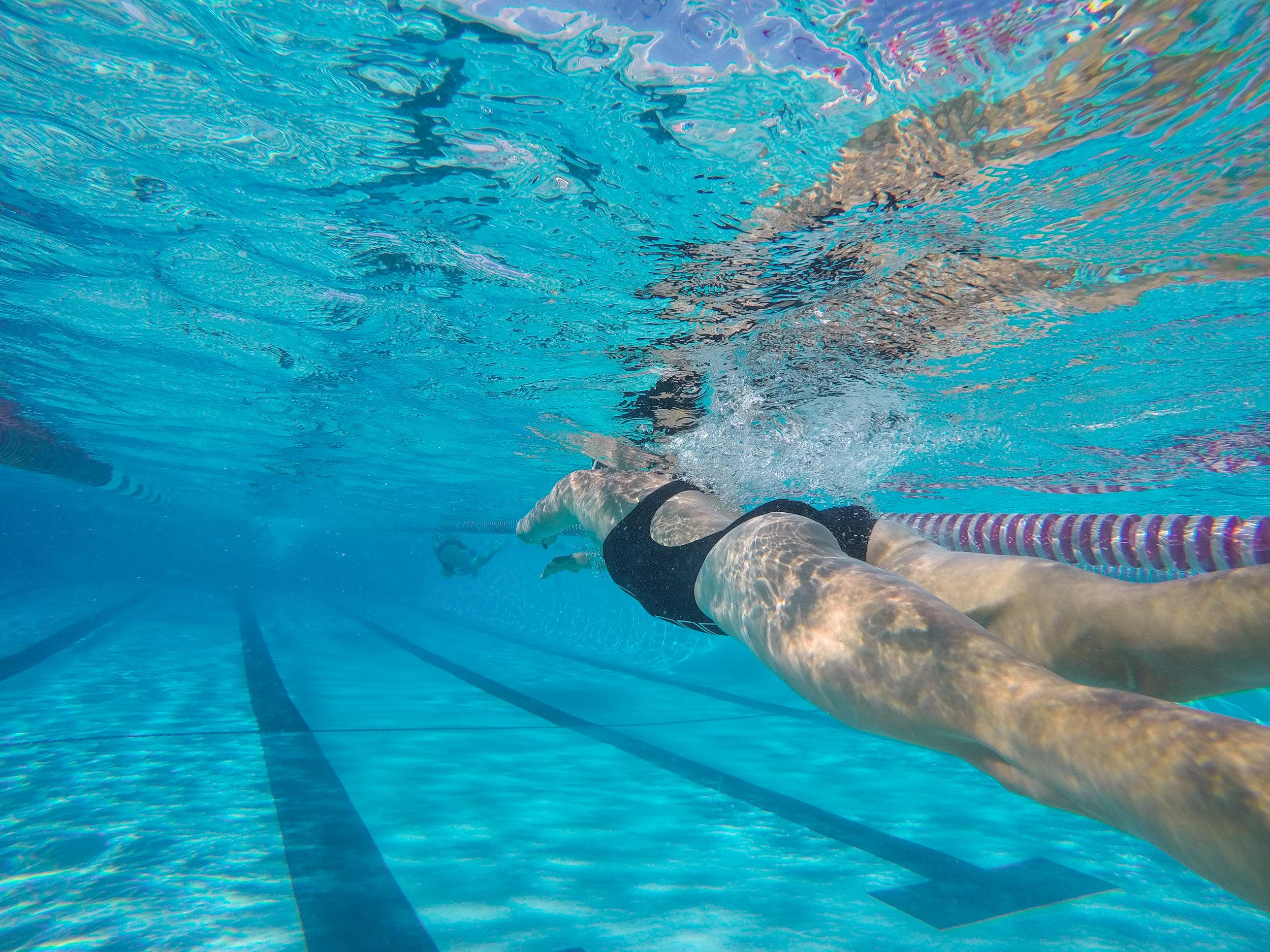 Talbot Swimming 2.jpg