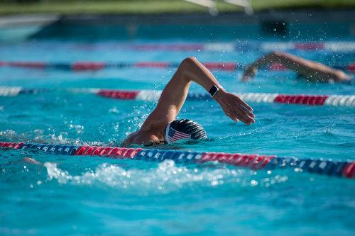 Mammoth swimmig 5.jpg