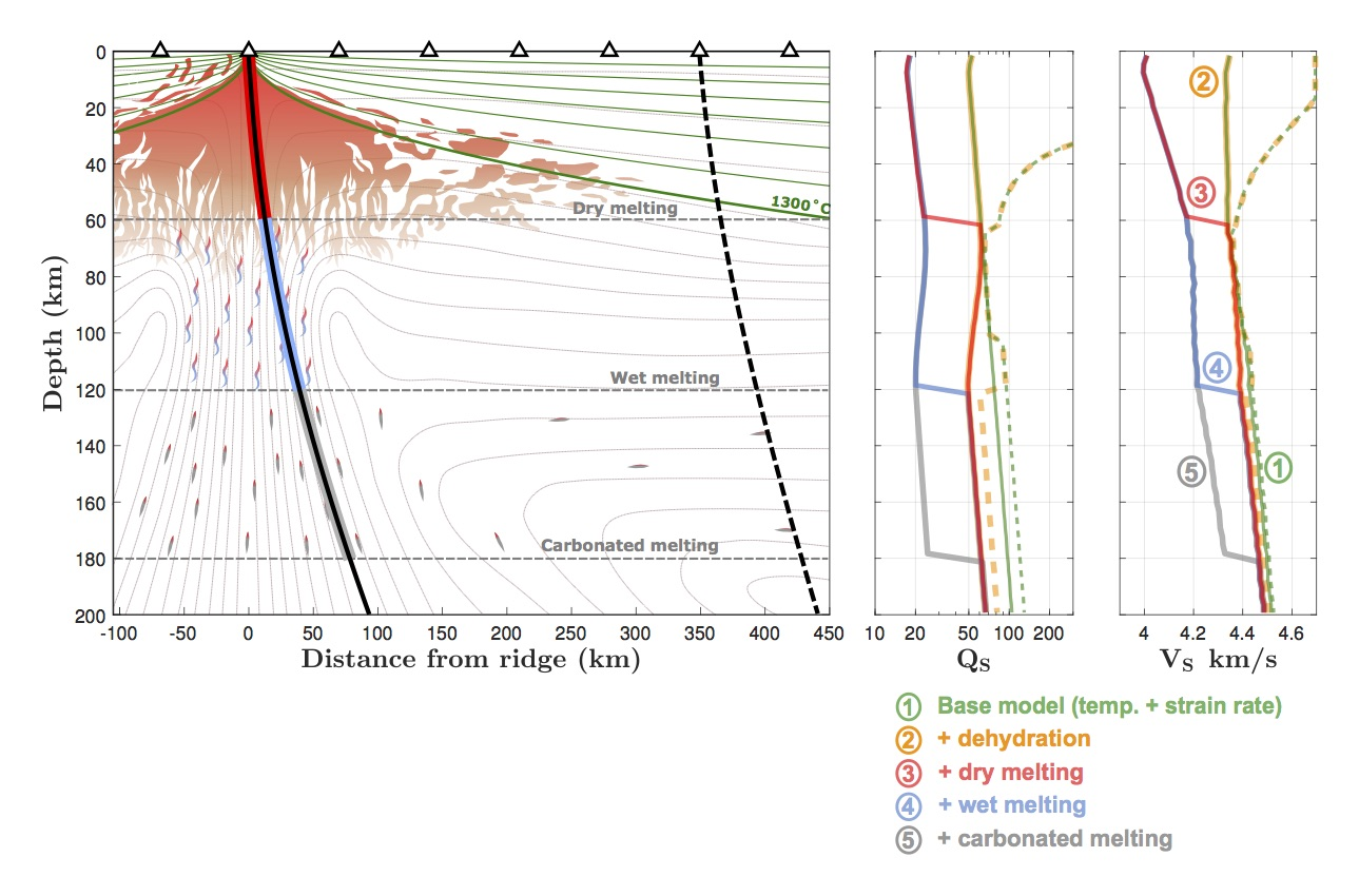 Schematic figure of melt distribution beneath a mid-ocean ridge, and the accompanying Qs and Vs profiles 'seen' by synthetic seismic rays arriving at seismometers on the seafloor.