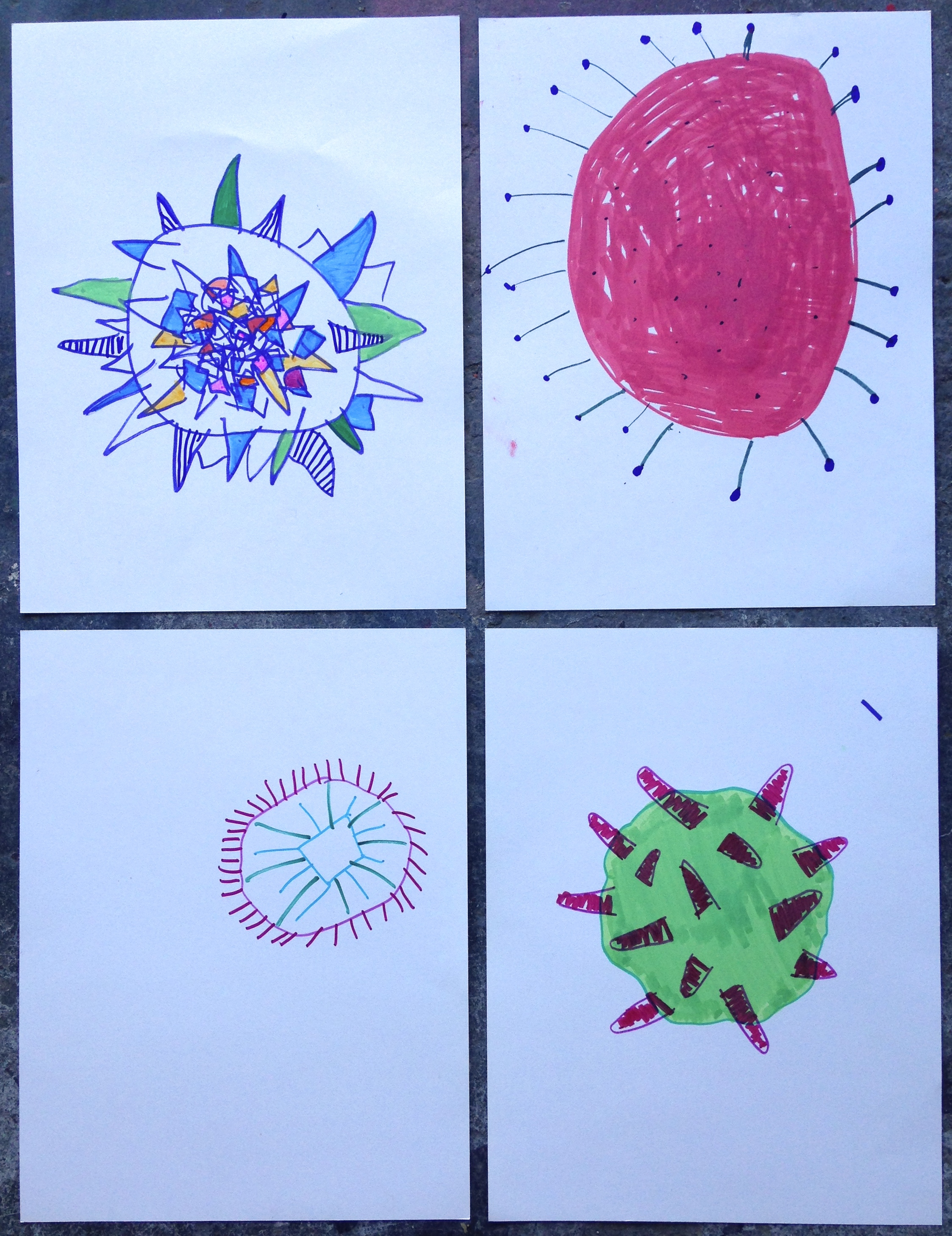 Pollen grain drawings made by visitors to farmers market