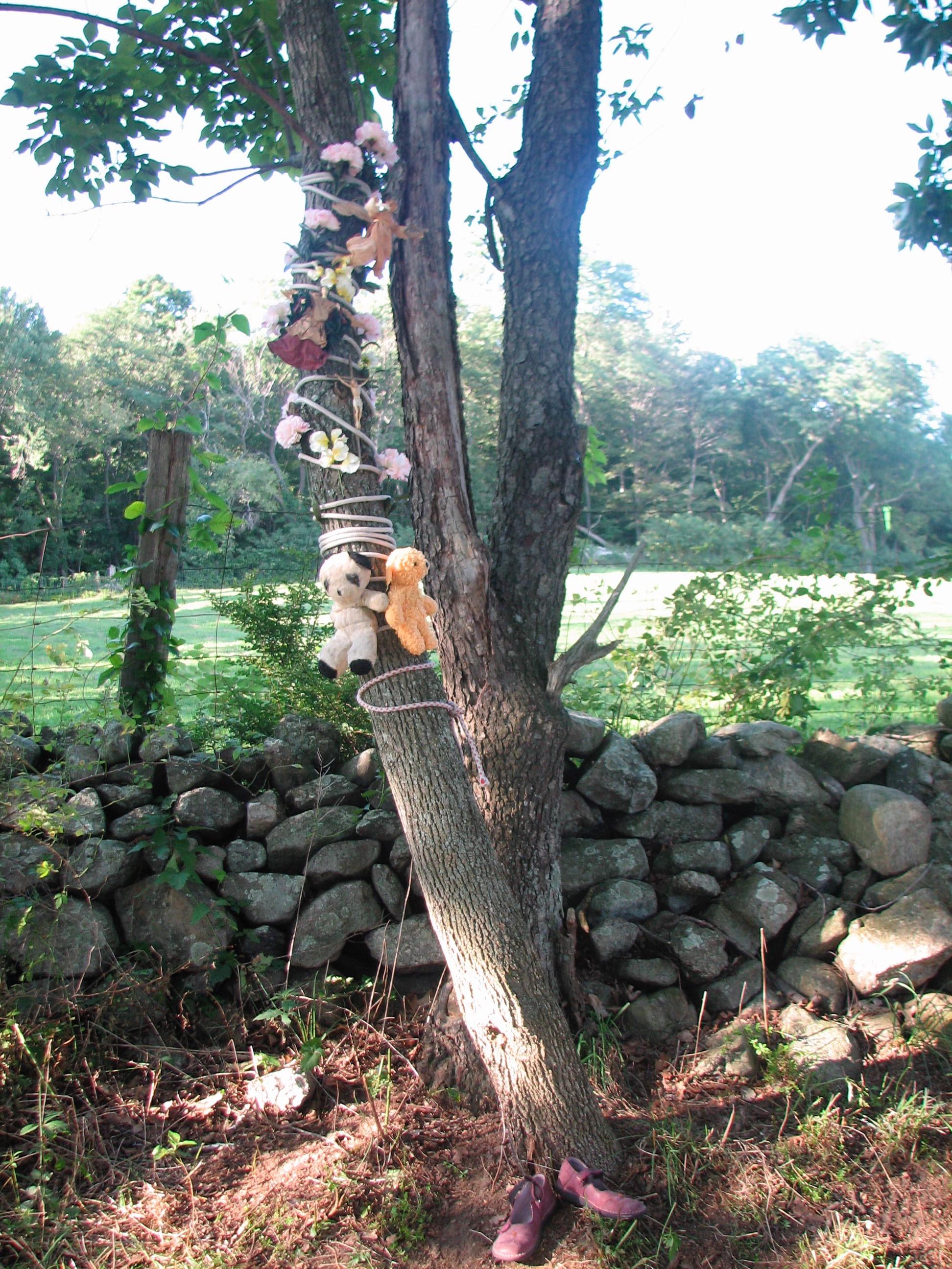 Accident 1 Tree.jpg