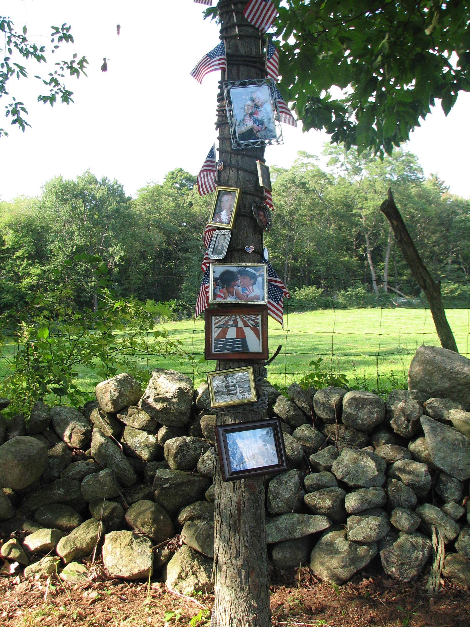 Iraq War 1 Tree portraits&Flags.jpg
