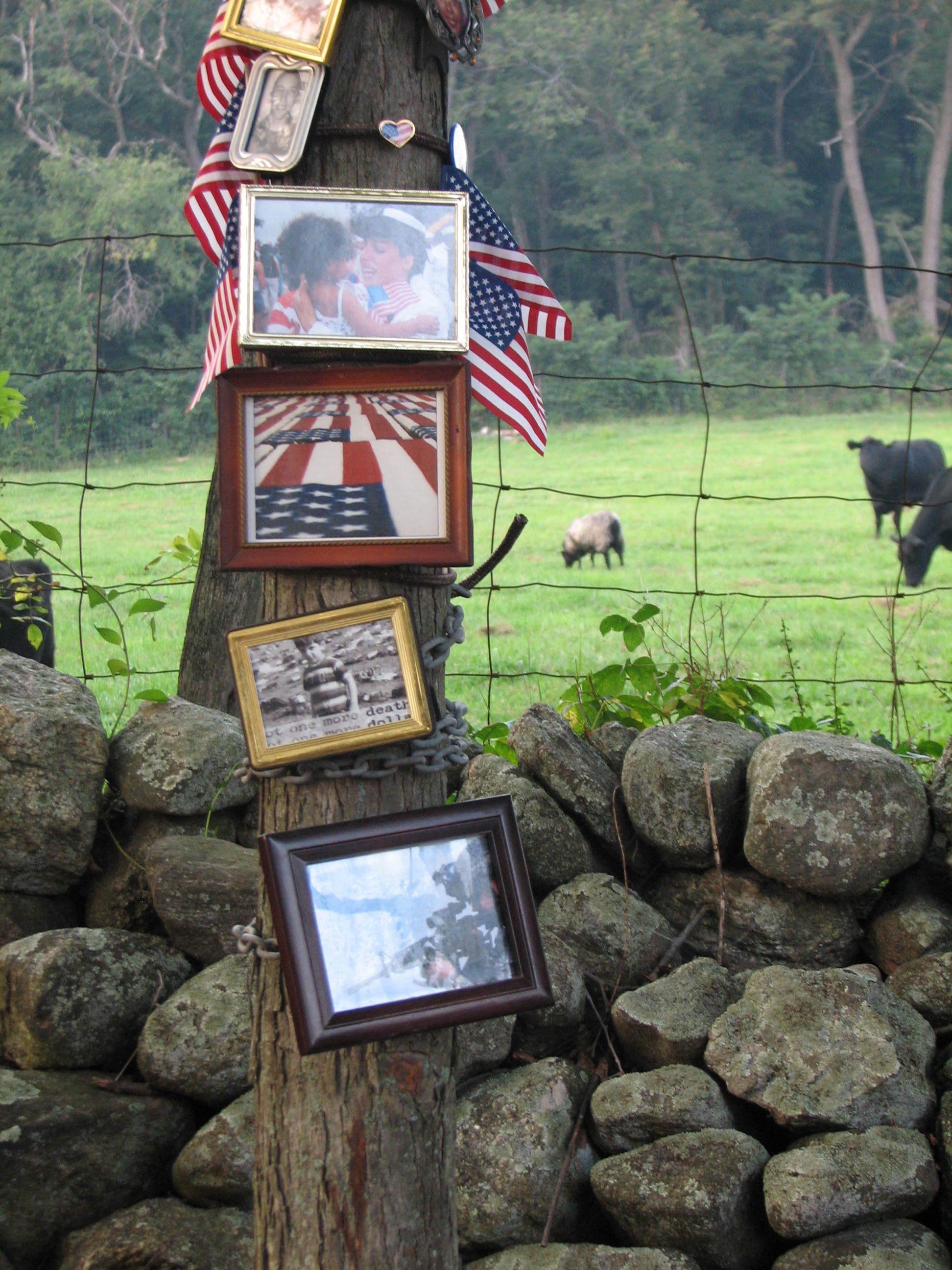 Iraq War 3 portraits&cows.jpg
