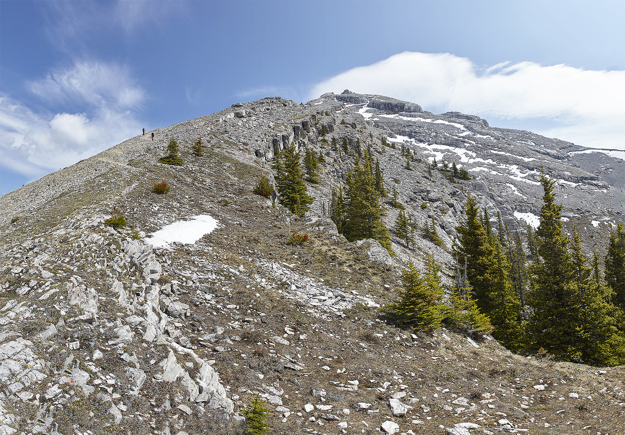 The ridge as seen from near the tree line.