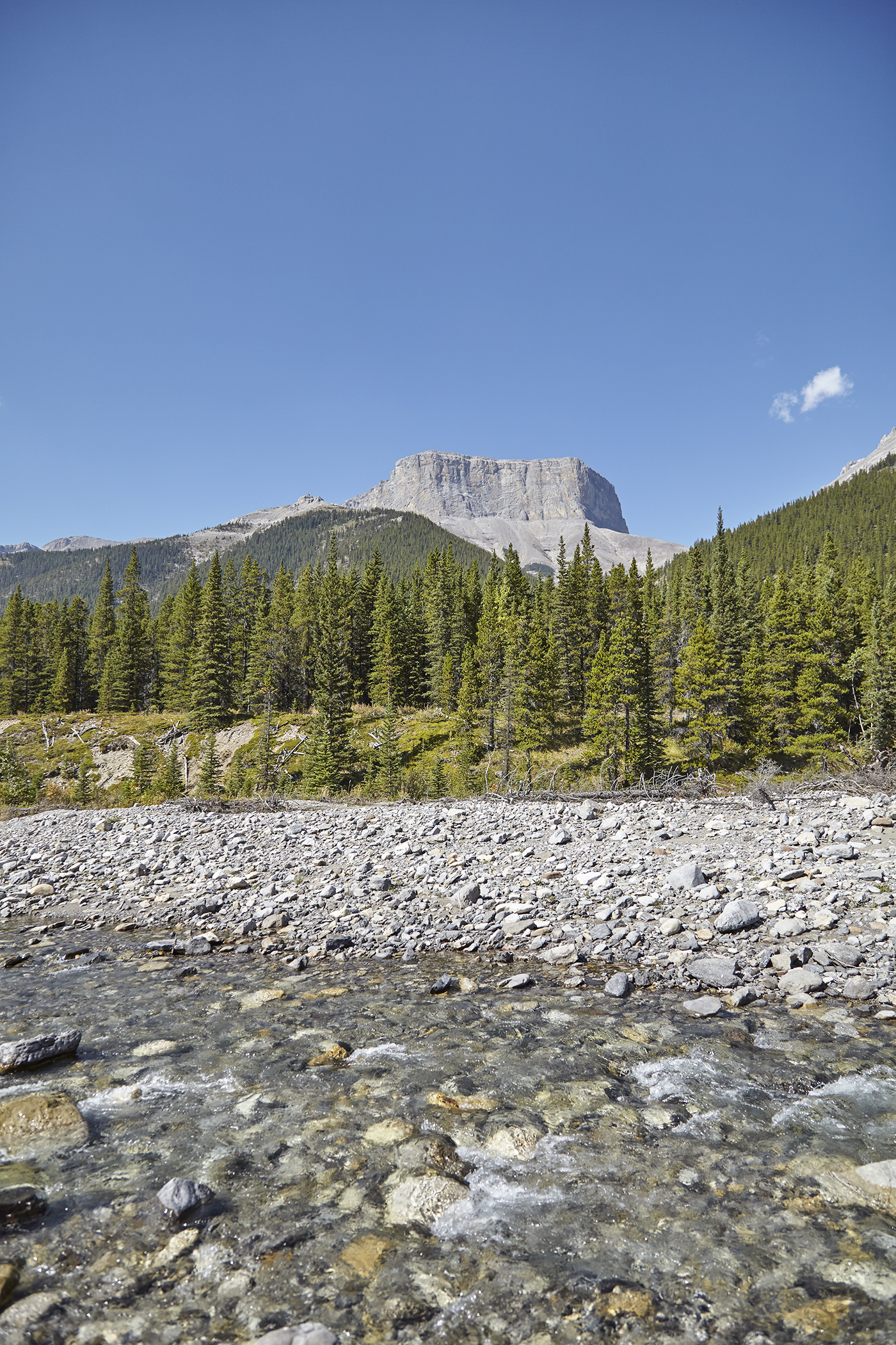 Mount Romulus from the Little Elbow River.
