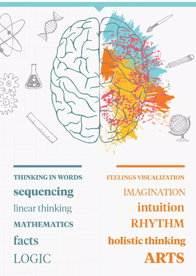 https://www.healthline.com/health/left-brain-vs-right-brain#left-brainright-brain-theory