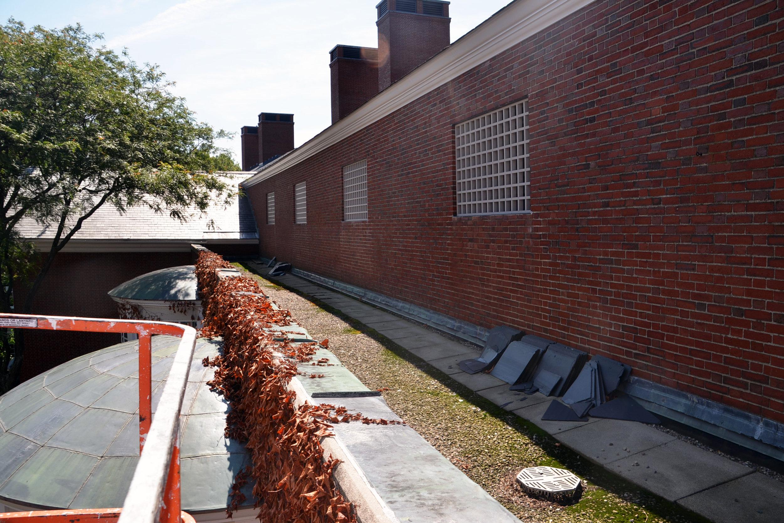 Roof Before 1.JPG