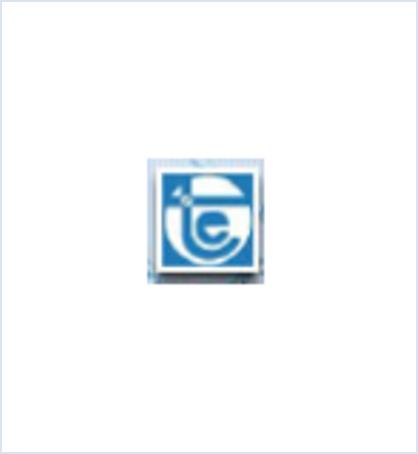 Technoelectric logo