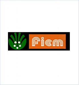 Fiem Industries.png