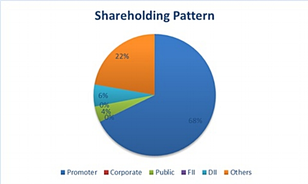 Shareholding Pattern 600X.jpg