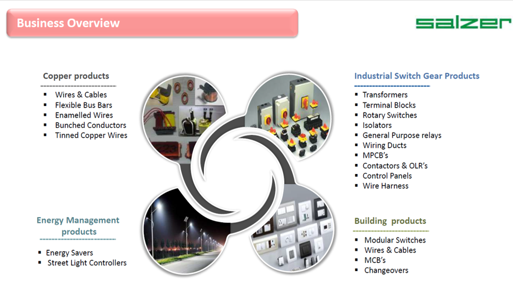 Salzer Business Overview.png