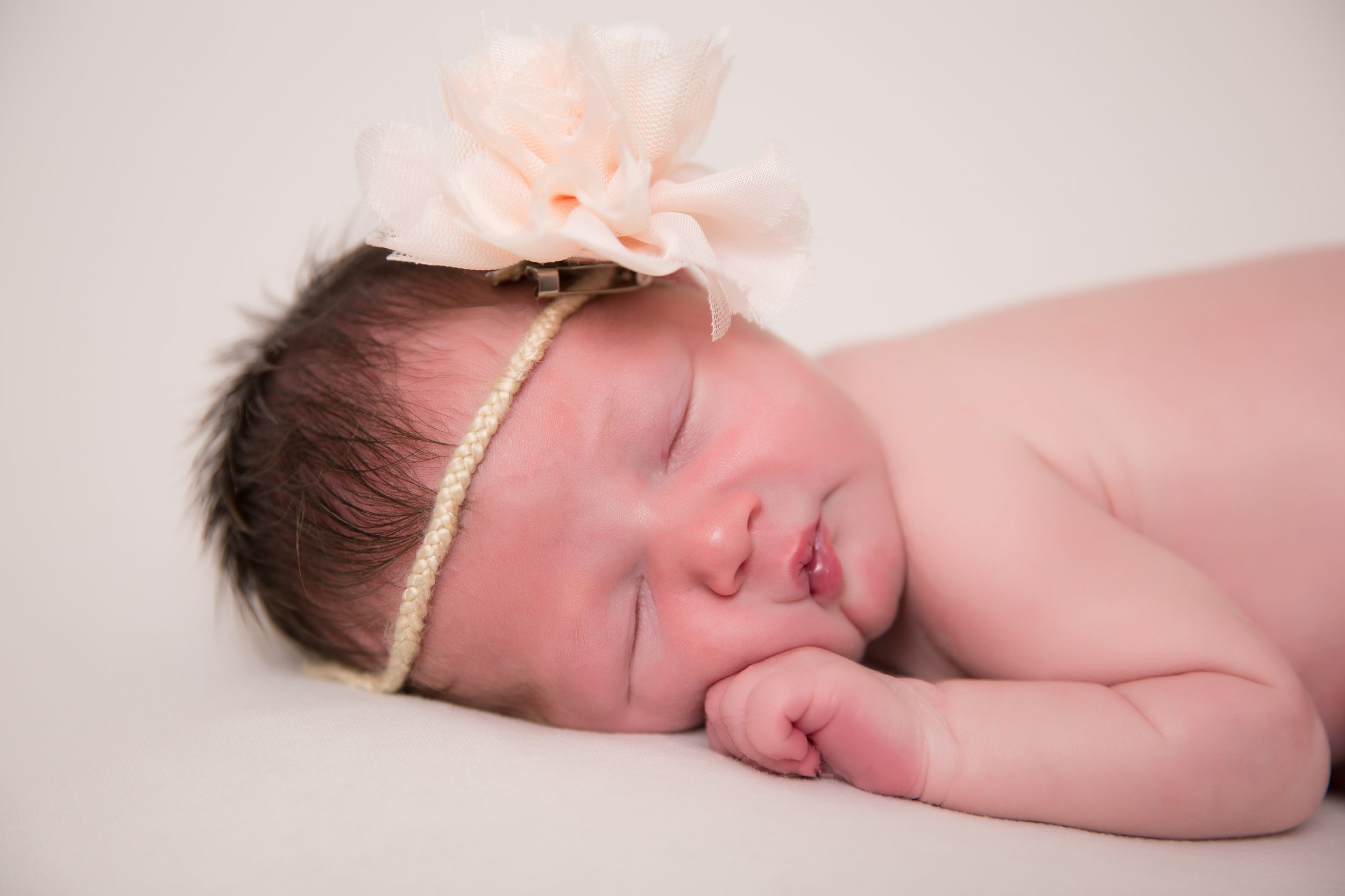 Paizlee joined the world on August 13th weighing 6 pounds 9 ounces!! At 7 days new, Paisley came into the studio to show us how modeling is done.She was such a precious little angel and handled her pictures amazingly! Grandma, auntie, and mom all enjoyed her precious poses :)