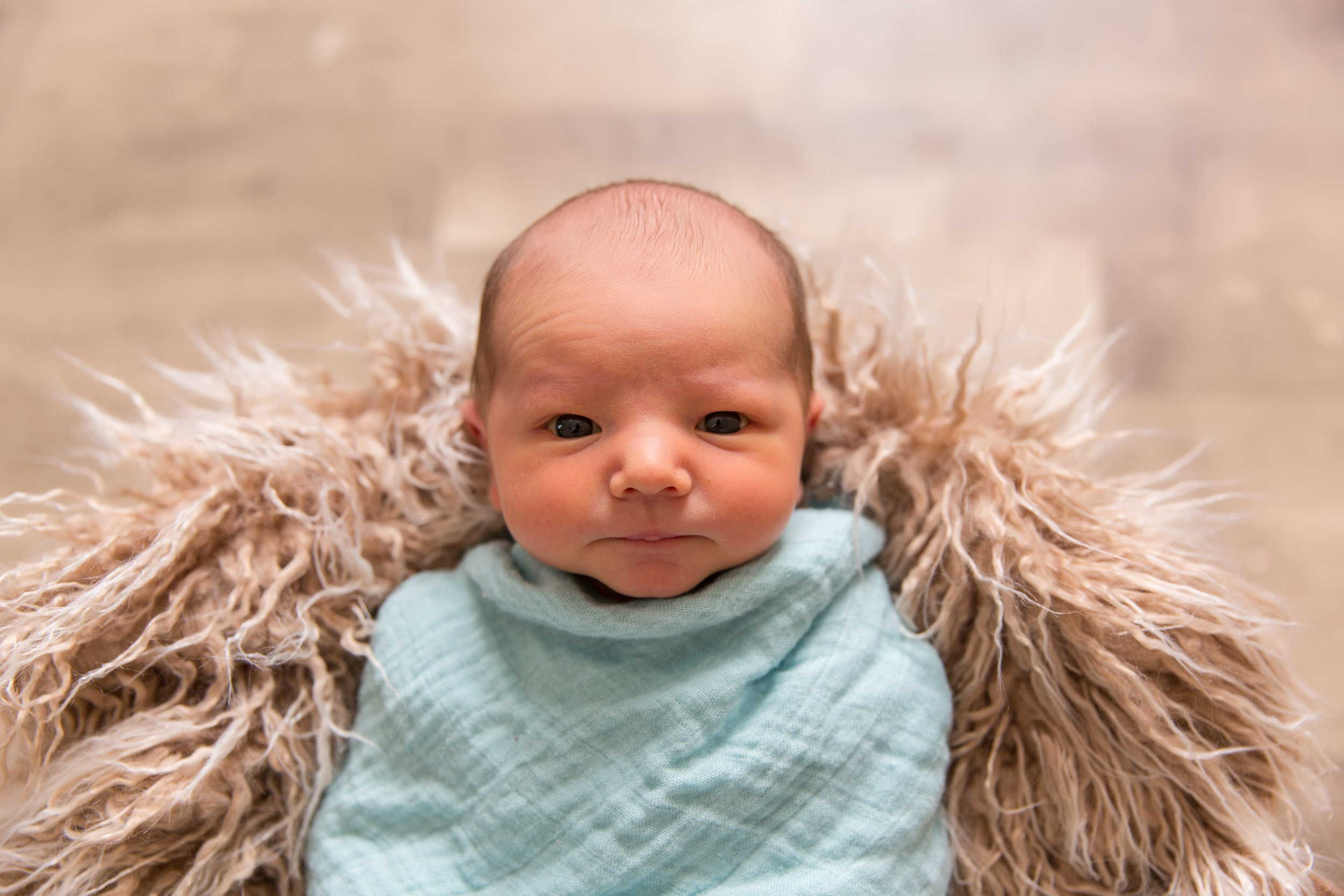 At 6 days new, this handsome little guy joined me in the studio for his newborn session. I was lucky enough to meet another penguin fan and incorporate my favorite sport, hockey, into the images. Thanks for letting me cuddle you little Blake :)