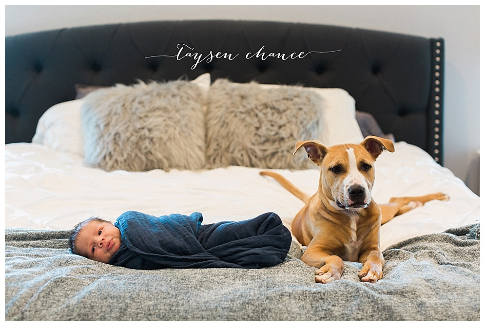 This little guy not only has mommy & daddy wrapped around his finger, but his puppy too! Taysen is one lucky little guy with an adorable bedroom and loving parents. Shawnee & Andren have been clients turned friends for a few years now and I was completely thrilled to have had the pleasure of documenting their pregnancy and birth of this guy. I can't wait to watch him grow and continue photographing this cute little family!