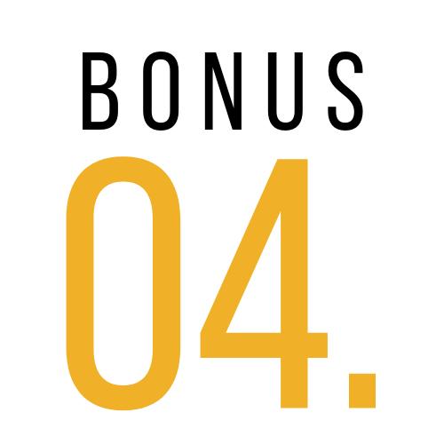 BONUS (4).png