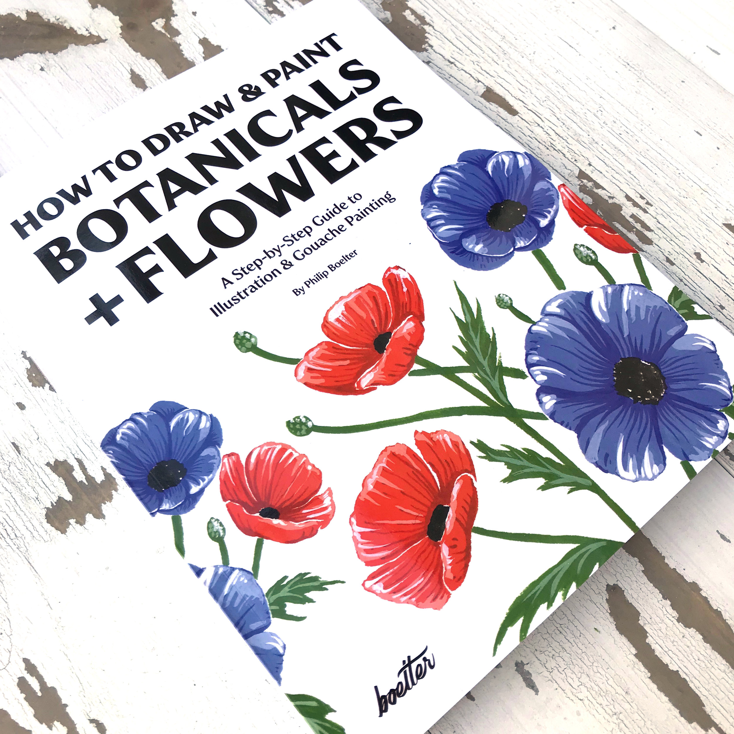 How to Draw and Paint Botanicals and Flowers the book cover
