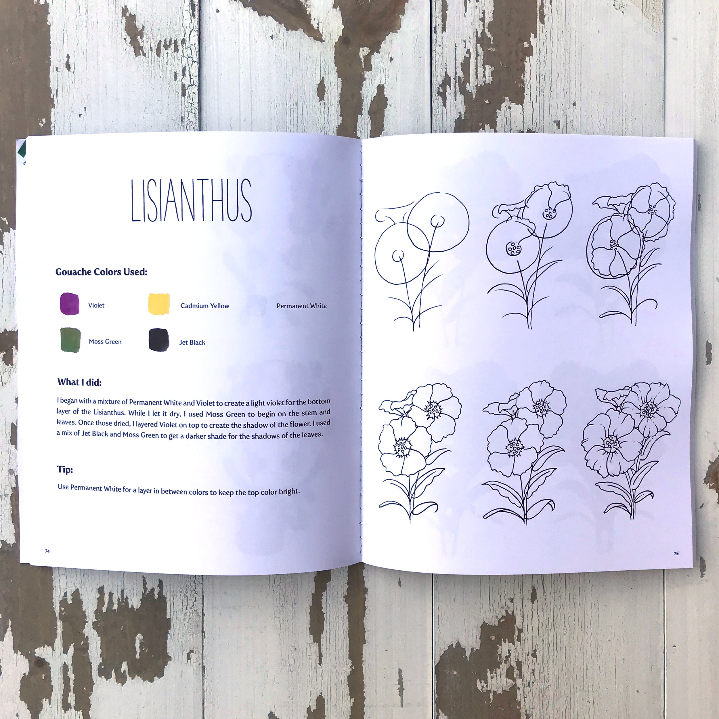 How to Draw and Paint Botanicals and Flowers Illustration Page