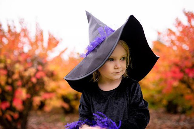 One more of my witchy woman. 🕷  #lifestylefamilyphotography #newberg #clickinmoms #sherwoodphotographer #newbergoregon