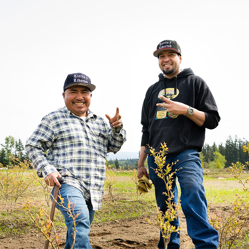 Meet the co-founders and worker-owners of Cooperativa Tierra y Libertad: Modesto Hernandez Leal (left) and Ramón Barba Torres (right).    They graciously welcomed a few Co-op staff for a tour of their 65-acre cooperatively owned farm in Everson, Washington.