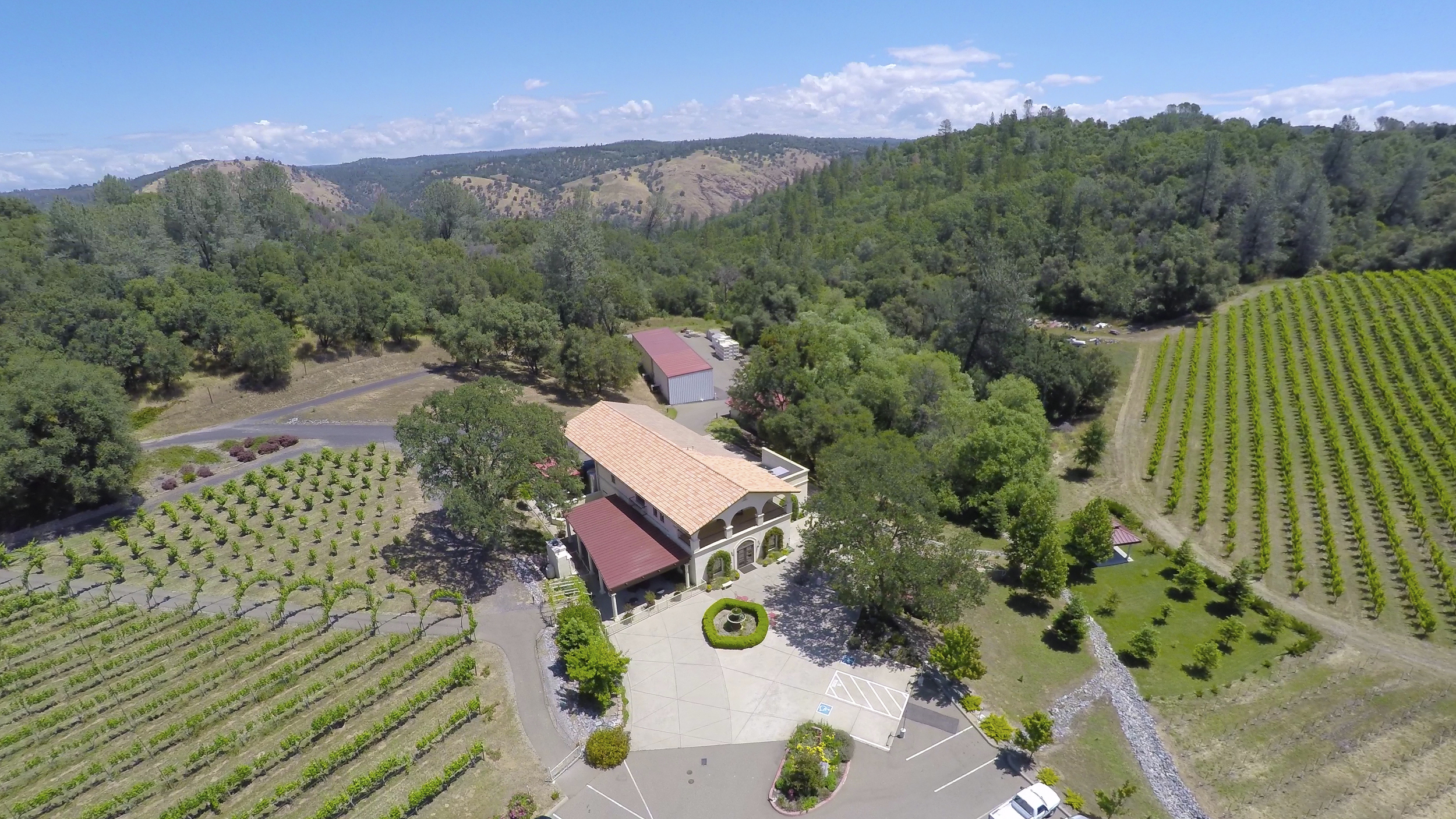 741-Cold-Springs-Placerville-Aerial (8 of 22).jpg