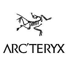 arteryx_medium.jpeg