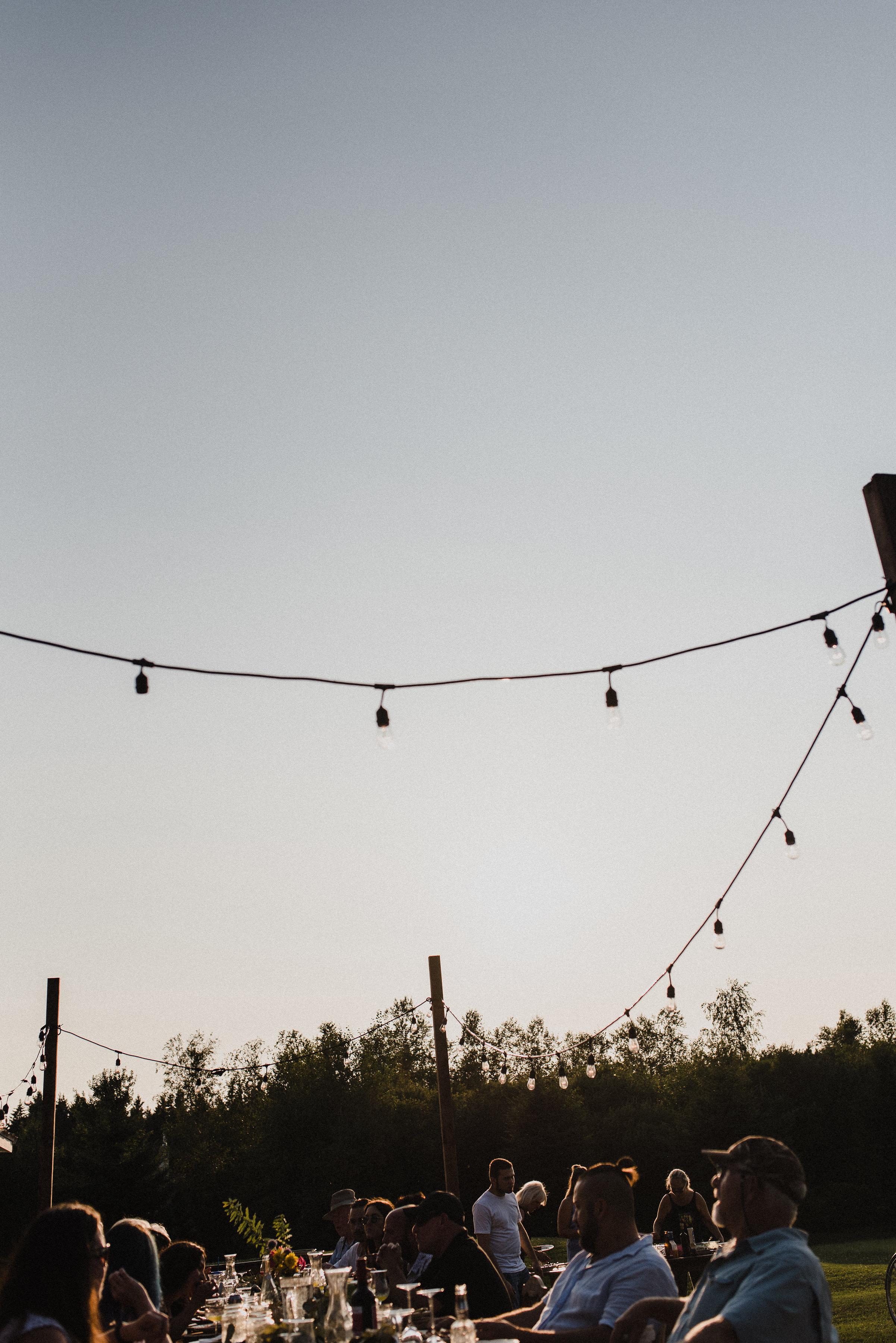 victoria_lafleur_backyard_supper_summer-85.jpg