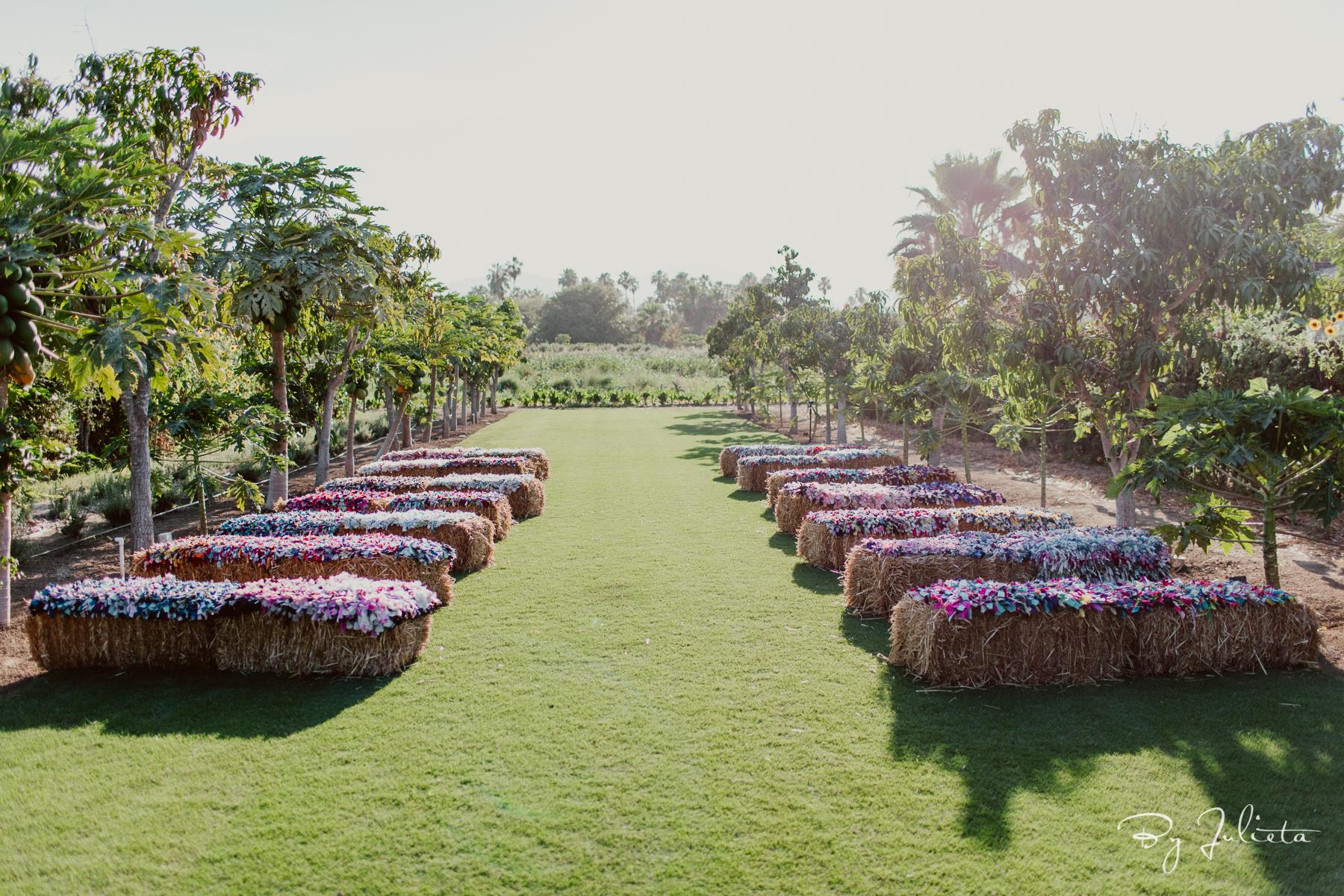 Flora Farms. M+T. Julieta Amezcua Photography.  (307 of 630).jpg