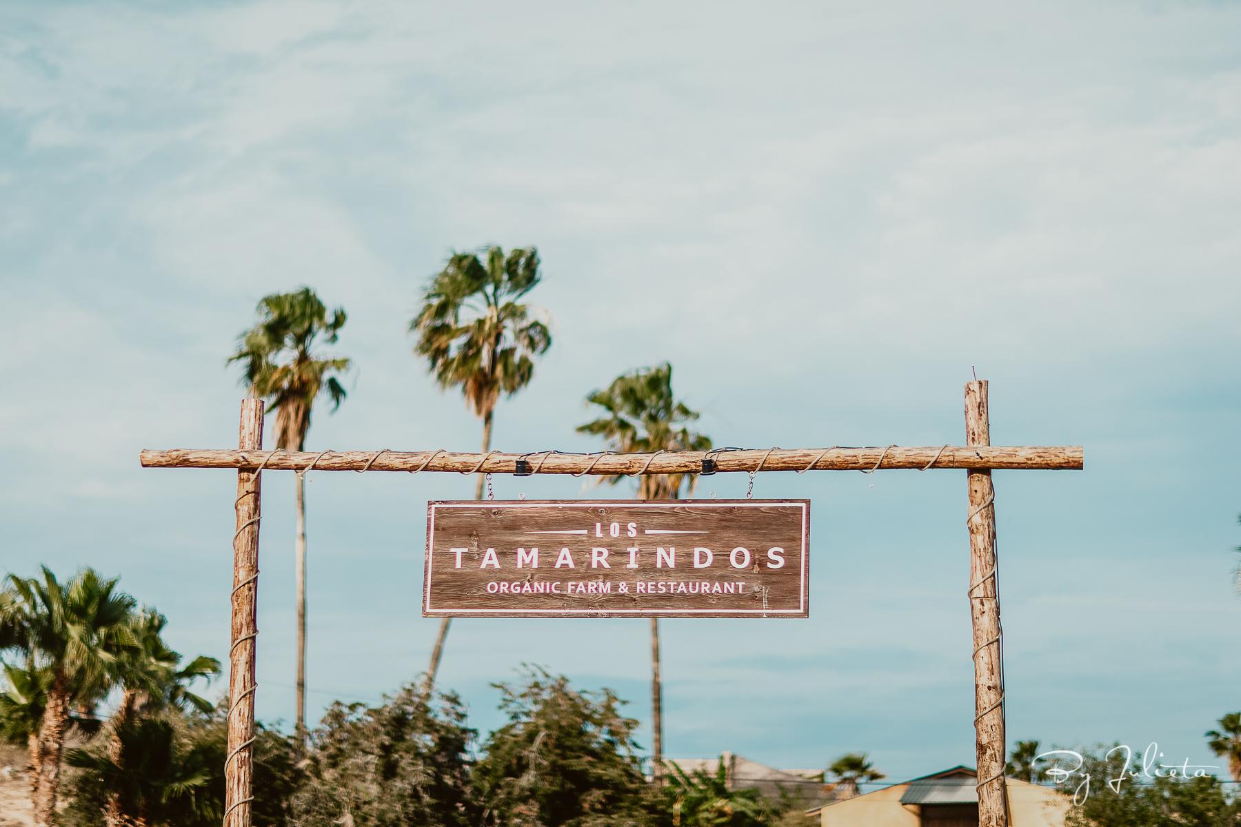 Los Tamarindos Wedding. D+L. Julieta Amezcua Photography. (9 of 25).jpg
