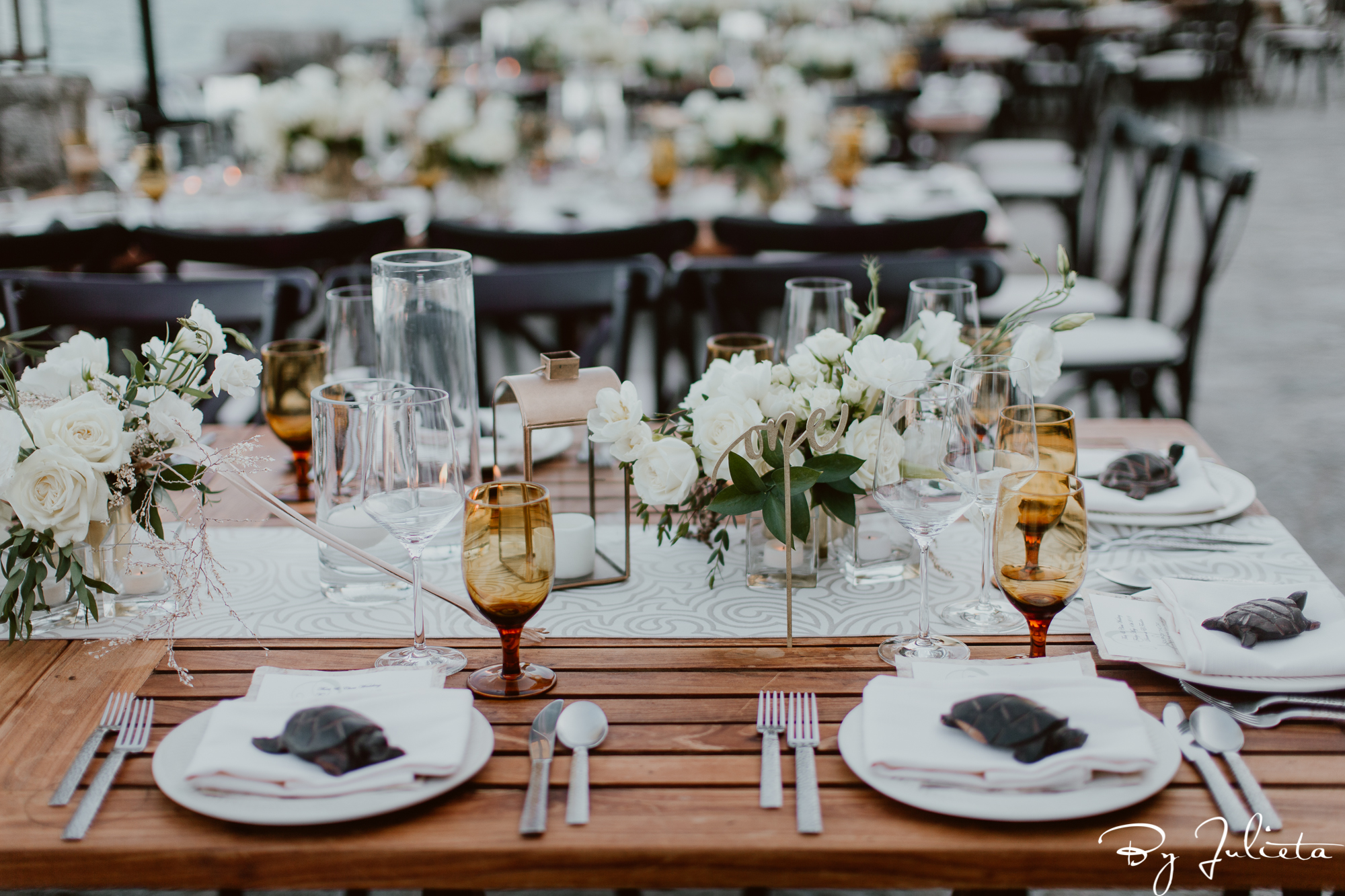 The Resort at Pedregal Wedding. T+C. Julieta Amezcua Photography._-634.jpg