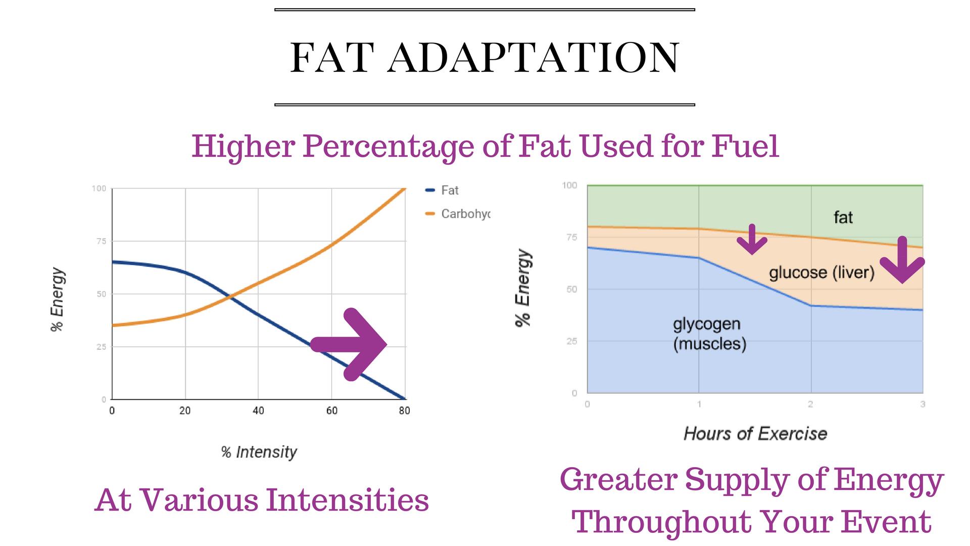 fat adaptation