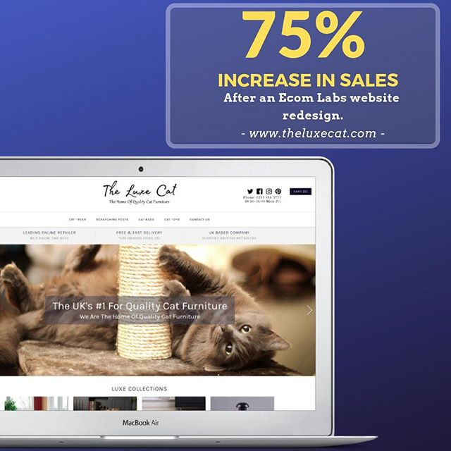 The Luxe Cat came to us for a Website Redesign for their Cat Furniture business and left with a 75% increase in sales after only 3 months! . DM us to find out how we can do the same for your business.