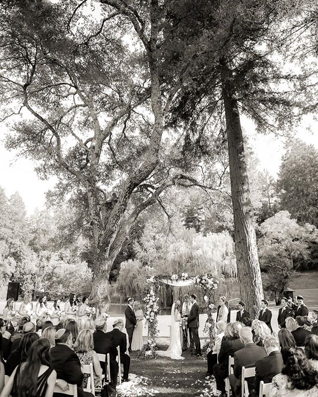 Meodowood | Napa | wedding | ceremony @meadowoodnews @amberevents @staceypentlandphoto