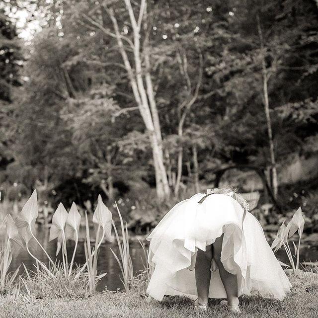 Nestledown | Los Gatos | wedding @staceypentlandphoto #nestldownwedding #sppblackandwhitephoto