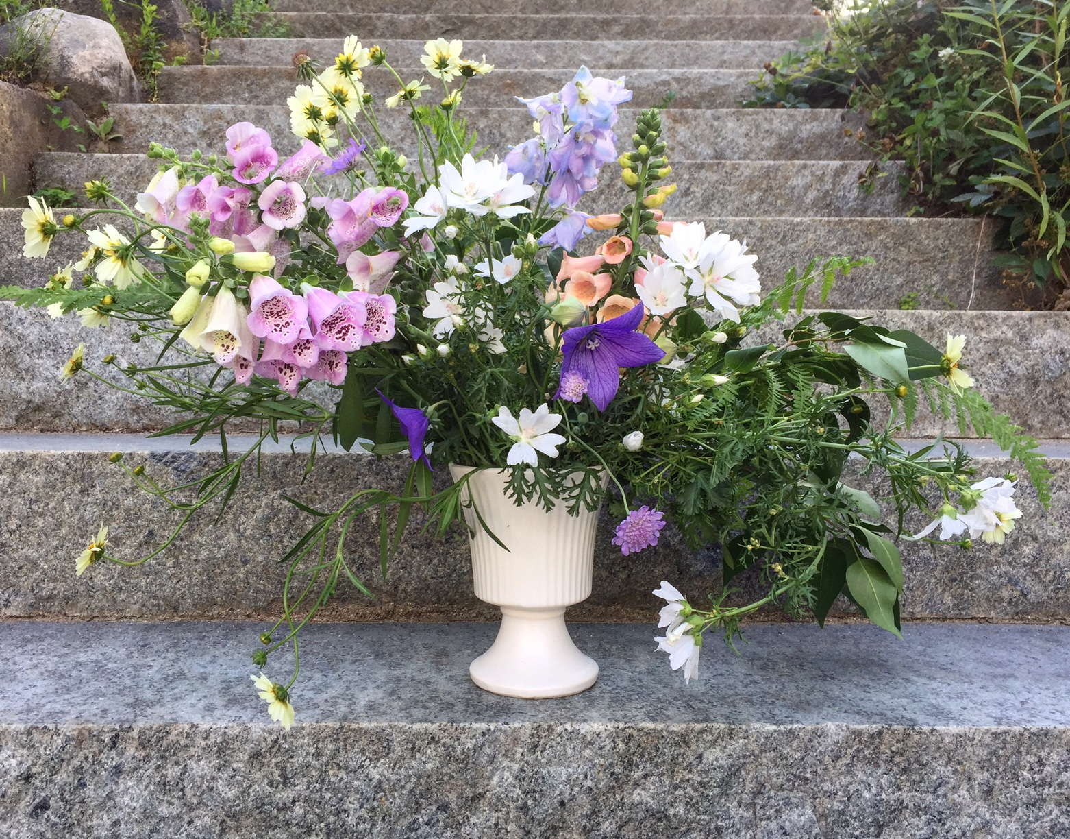 Mid-summer's softer colors in foxglove, delphinium, malva, coreopsis, ballon flower, and scabiosa.