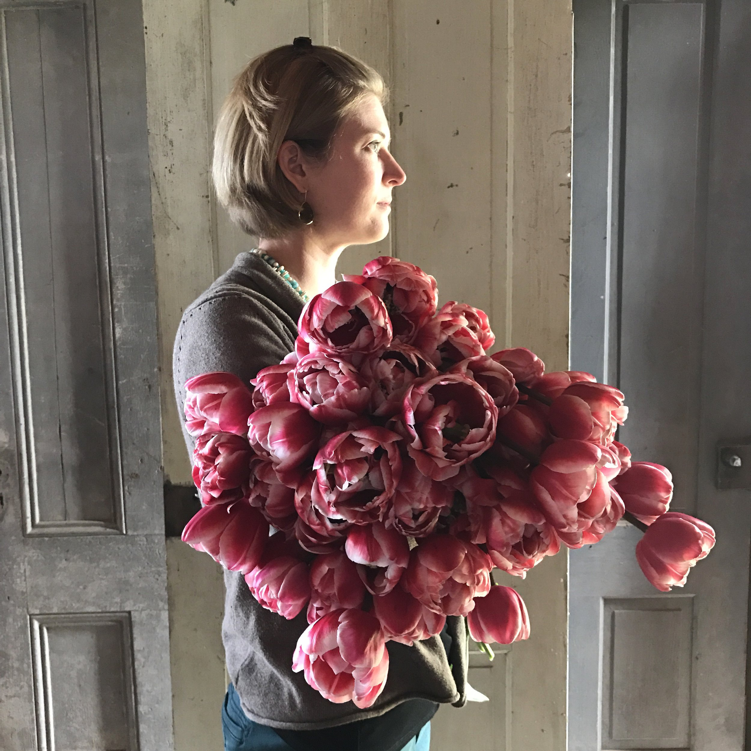 An armload of Drumline tulips at Floret Flower Farm. Photo by @junesblooms with my iPhone.