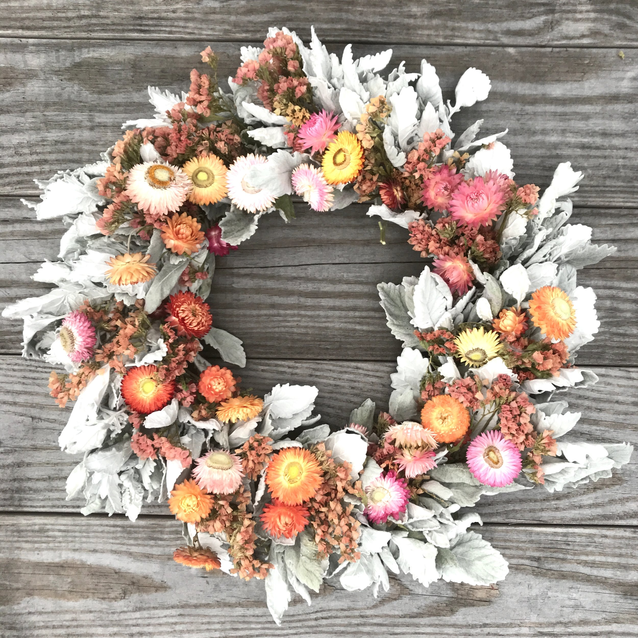 Dusty miller, strawflower, and statice wreath for an early November farmer's market.