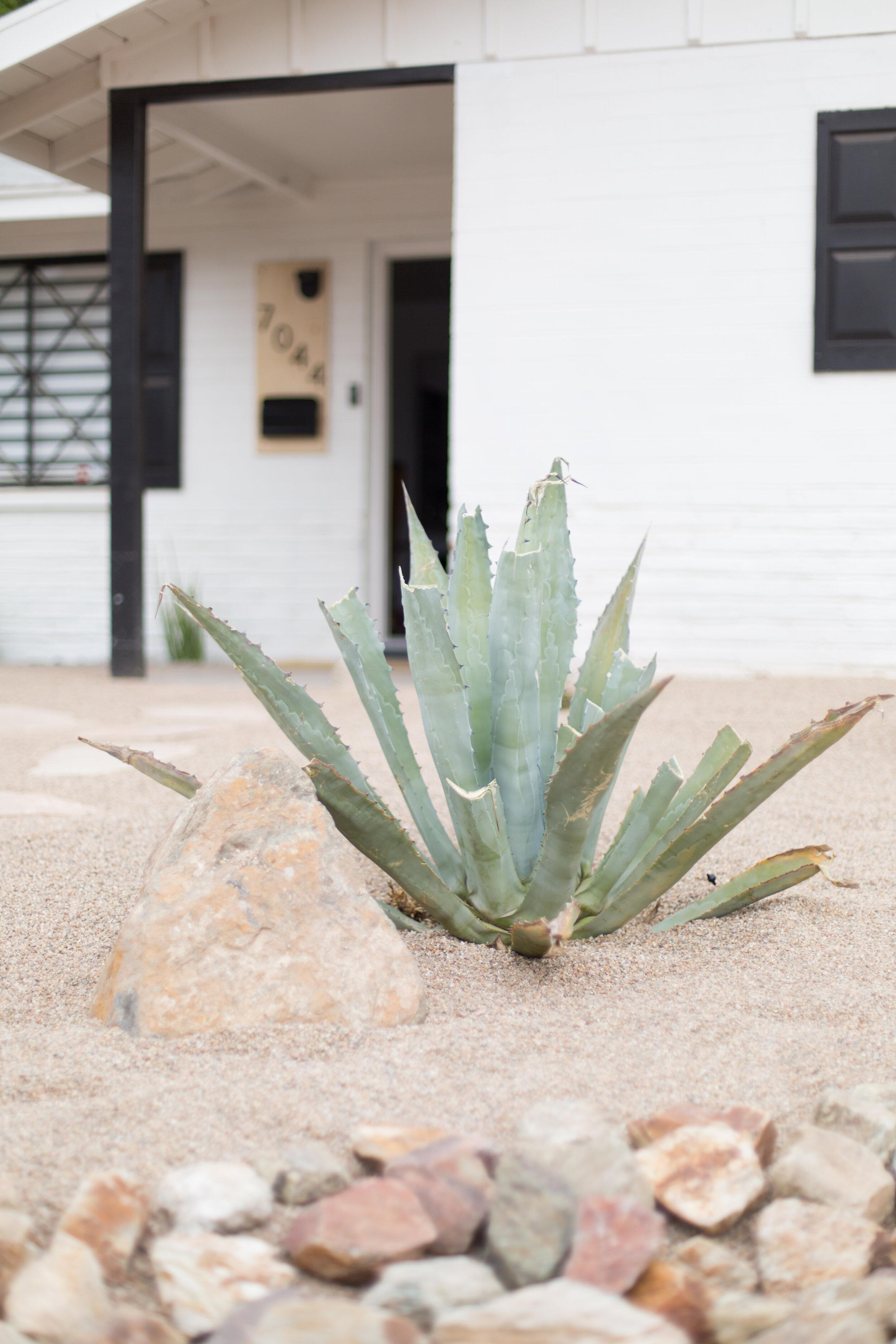 Casa Tres Agaves Airbnb (100 of 103).jpg